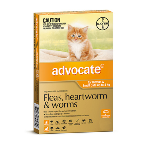 Advocate For Cats Buy Advocate Flea And Worm Treatment
