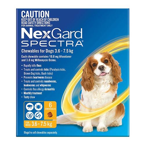 Nexgard Spectra For Dogs Buy Nexgard Spectra Only At 4652