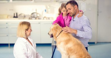 Ask your Veterinarian about Good Nutrition of your Pet