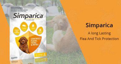 Simparica Long Lating Flea Protection