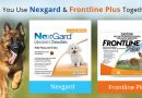 Can You Use Nexgard and Frontline Plus Together?