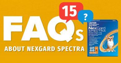 FAQs-about-nexgard-spectra
