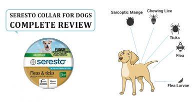 Seresto Collar for Dogs Reviews