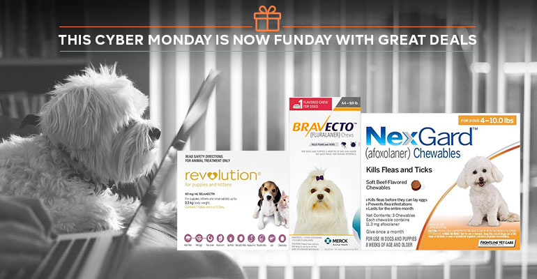 Cyber-Monday-pet-deals