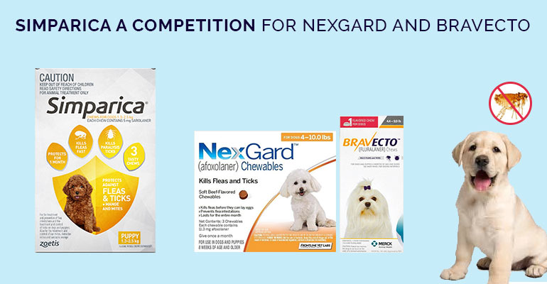 Simparica - Competition products like Bravecto and Nexgard