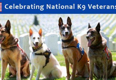 K9 Veterans Day