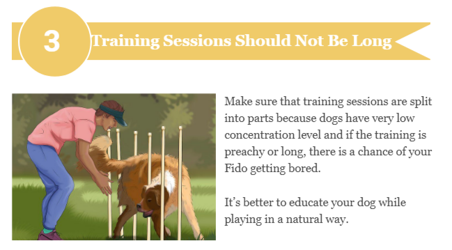 Train your Dogs