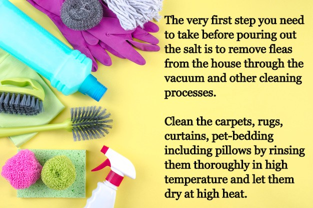 removing fleas from house