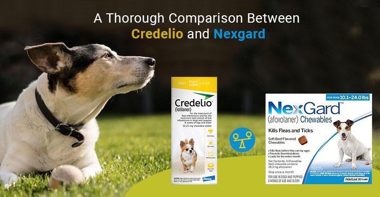 Credelio vs Nexgard