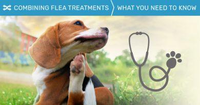 Combining Flea Treatments