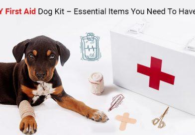 DIY-First Aid Dog Kit