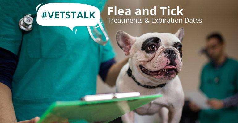 VetsTalk :Flea and Tick Treatments and Expiration Dates