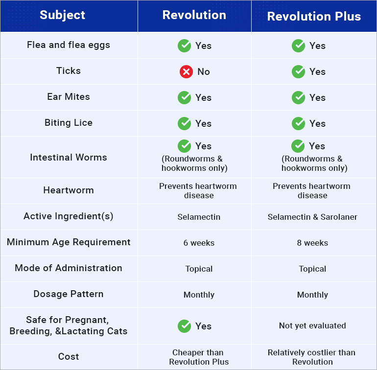 Revolution Plus The Extra Plus To Revolution For Cats Budgetvetcare