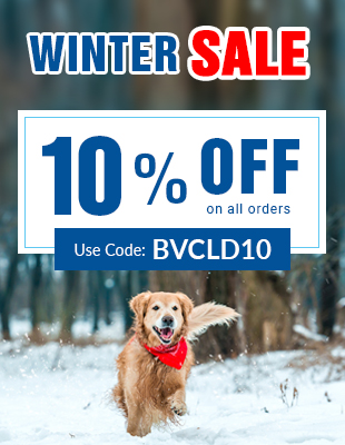Big Winter Sale!