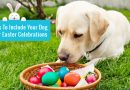 4 Ways To Include Your Dog In Your Easter Celebrations