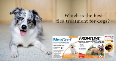 Buy Flea and Tick Treatment Products for Dogs in 2020