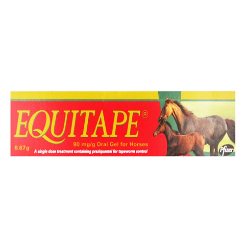 Equitape Wormer Paste for Horse
