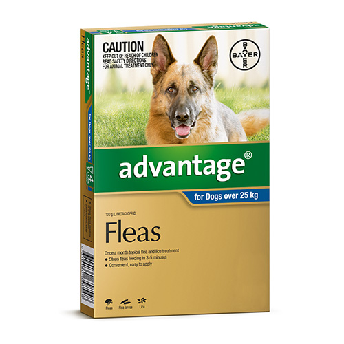 Flea Treatment For Extra Large Dogs