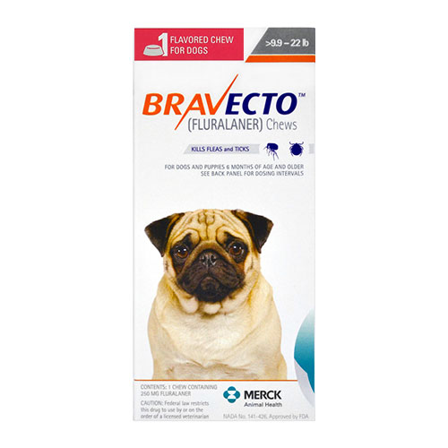 Flea And Tick Control For Small Dogs