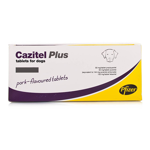 Cazitel Plus for Dogs