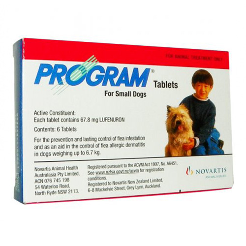 Program Tablets for Dogs