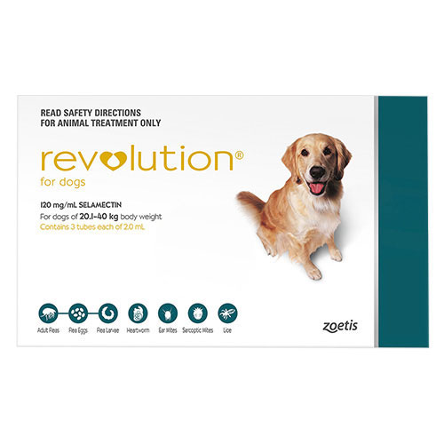 Revolution Flea Treatment For Large Dogs